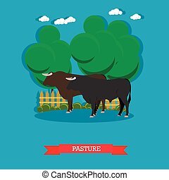 Vector concept poster of beef farm. Grazing cattle on a pasture