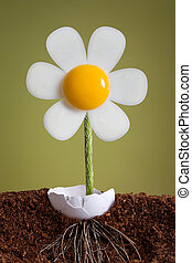 Egg Plant - A flower is growing out of an eggshell. It has...