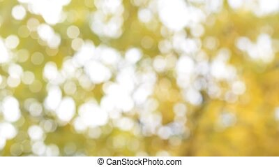 Yellow and white bokeh circles background