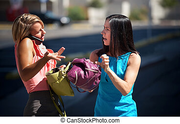 Pretty women having and animated conversation - Two women...