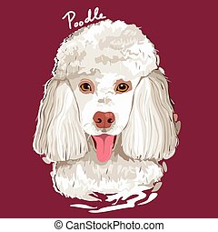 Poodle Painting Poster - A vector illustration of Poodle...