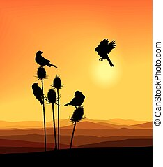 Birdie on a thistle - vector illustration small birds on a...