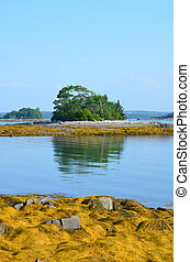 Amazing Little French Island in Casco Bay - Reflections of...