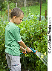 Little gardener at work - Seven years old boy spraying...