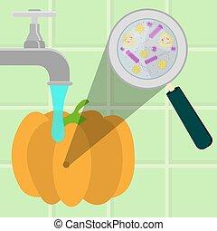 Washing contaminated pumpkin - Contaminated pumpkin being...