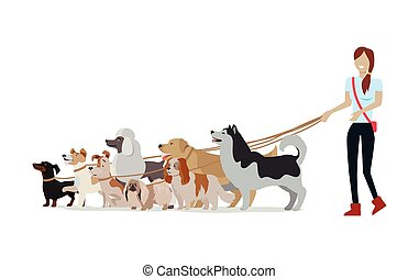 Dog Walking Banner. Woman Walk with Different Dogs - Dog...