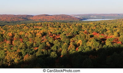 Algonquin forest in the autumn - An Algonquin forest in the...