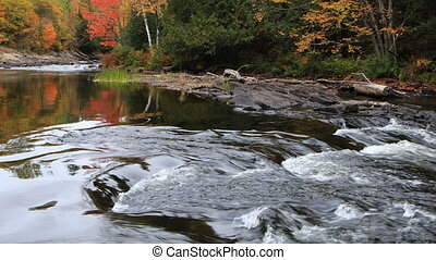 River rapids in Algonquin in fall - A River rapids in...