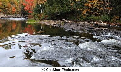 River rapids in Algonquin in fall - A River rapids in...