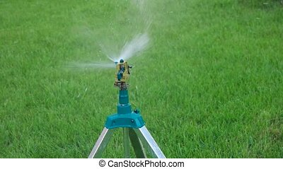 head of garden sprinkler working copy space on green grass...