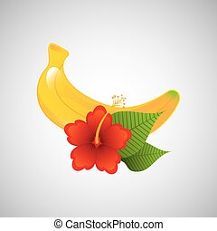 red flower and tropical banana fruit design vector...