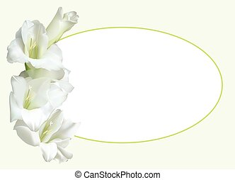 Greeting card with white gladiolus - Greeting card, or...