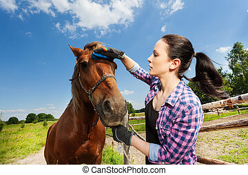 Portrait of young woman grooming horse in summer - Close-up...