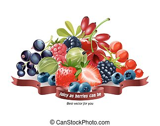 Mix of fresh berries isolated on white background - Vector...