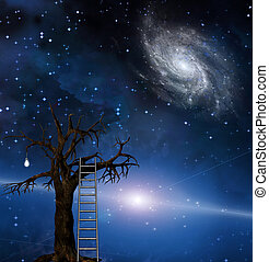 Tree of wisdom - Ladder leans on tree of wisdom