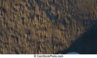 Feet of man walking on wet sand in slow motion