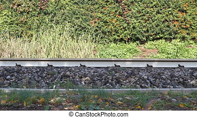 Moving train - Three clip, with different views, of a moving...