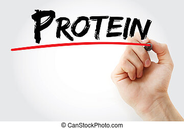 Hand writing Protein with marker, concept background