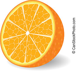 Vector orange fruit isolated over white