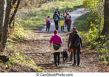 Group of people walking by hiking trail