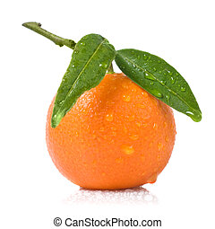 Tangerine with green leaves and water drops isolated on...
