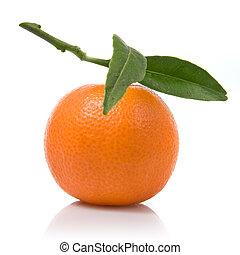 mandarynka, zielony, liście, odizolowany, biały