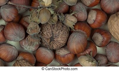 hazelnuts and walnuts dry nuts food. counterclockwise...