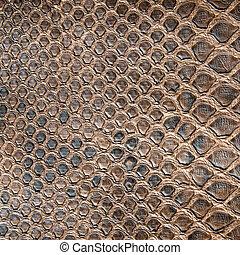 marrón, cocodrilo, textura