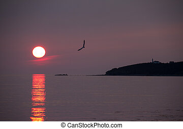 Newfoundland sunset - Sunset in rocky harbour newfoundland