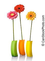 Bouquet from daisy-gerbera in glass vase isolated on white