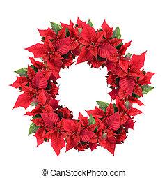 navidad, guirnalda, flor de nochebuena