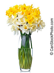 bouquet from white and yellow narcissus in vase isolated