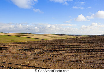 yorkshire wolds farming - rolling hills in a yorkshire wolds...