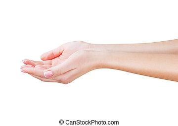 Two open empty hands