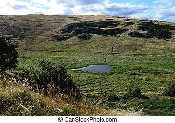Pond Viewed on the Hillwalk at Arthur's Seat - A look at the...