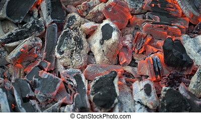 Footage burning coals closeup. 4K video