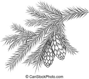 Realistic vintage engraving wreath of fir branches and pine cones, beads isolated on white background. Christmas, New Year design elements.