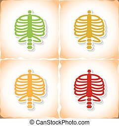 Human rib cage. Flat sticker with shadow on old paper