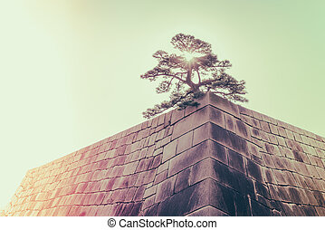 The foundation of a Castle tower of the Edo-jo Castle,Japan...
