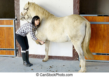 young woman cleans the horse's hooves - beautiful brunette...
