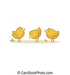 Chicks - Cute Chicks vector design