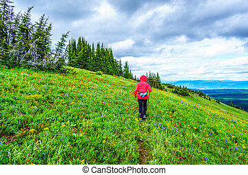 Senior Woman hiking through the Alpine Meadows