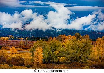 Autumn Landscape near Jackson Hole Wyoming - Jackson hole...