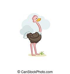 Ostrich - Cute Ostrich vector design