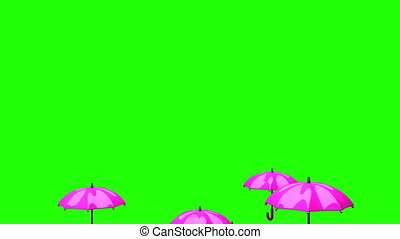 Rising Pink Umbrellas On Green Chroma Key - 3DCG render...