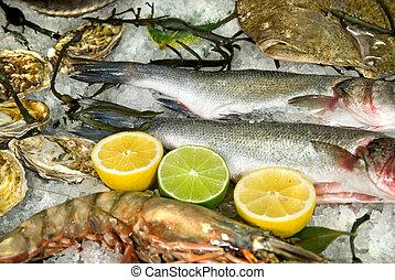 Świeży, Mrożony, fish, Ostrygi, homar, cytryny,...