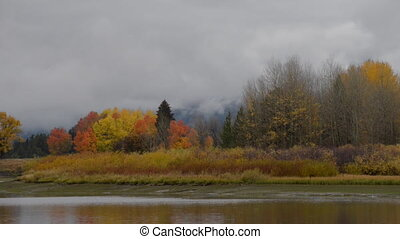 Grand Teton National Park Fall Colors pan left - Autumn in...