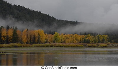 Grand Teton National Park Fall Colors slow pan right -...