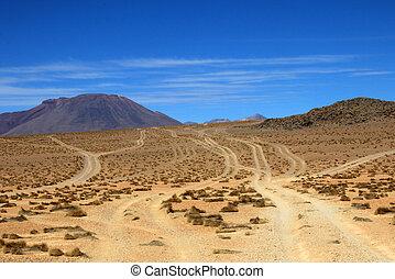 Wheel tracks in the desert