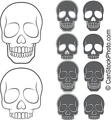 Vector set of skulls. Isolated objects on white.